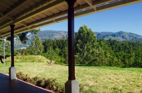 Looking out from the verandah